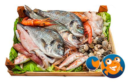 Cistella Peix a Casa