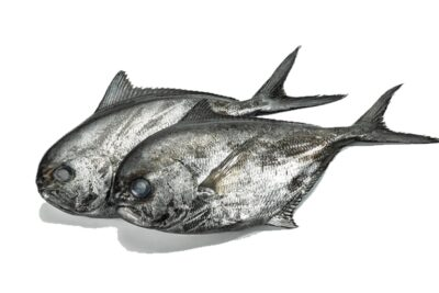 castanyola qualitat fresca peix