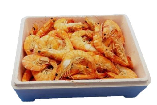 langostino cocido caja marisco