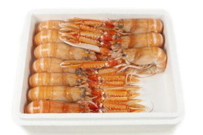 Escamarlà nº 00 congelat de 9 a 12 peces i de 1.5kg